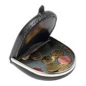 A change purse — Stock Photo