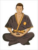 Martial Arts master — Stock Vector