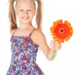 Beautiful girl with a of red gerbera — Stock Photo