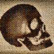 Foto de Stock  : Man's skull painted brown paint on cloth