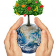 Hands holding the planet Earth with a tree and fruit .Elements of this image furnished by NASA. — Stock Photo