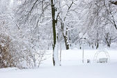 Winter trees covered with snow in the forest . — Zdjęcie stockowe