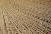 Plowed land on the field during agricultural work — Foto Stock