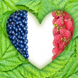 Flag of France in the heart of the berries on the leaves — Stock Photo #48045735