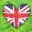 The Union Jack in the shape of a heart on the background of the leaves — Stock Photo #48045785