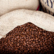 Coffee beans sack — Stock Photo