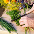 Cutting herbs — Stock Photo