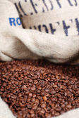 Coffee Seeds with burlap bag — Stock Photo