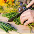 Grandmother chopping fresh parsley — Stock Photo
