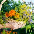 Basket of flower — Stock Photo