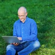 Businessman Using Laptop While Sitting On Grass — Stock Photo #25844907
