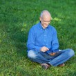 Businessman Using Digital Tablet While Sitting On Grass — Stock Photo #25844945
