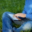 Midsection Of Businessman Using Digital Tablet On Grass — Stock Photo