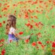Stock Photo: Girl in flower field