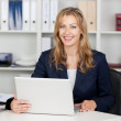 Smiling Businesswoman Using Laptop At Office Desk — Stock Photo #25900645