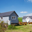 Camping Houses And Benched On Grassy Field — Stock Photo