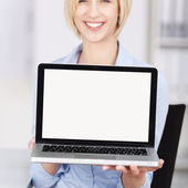 Businesswoman Displaying Laptop In Office — Стоковое фото