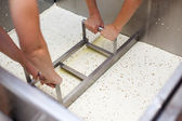 Extracting curd of a Vat-Machine in a Cheesemaker — Stock Photo