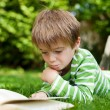 Boy lying on the grass reading a book — Stock Photo