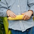 Sweet corn in little boys hands — Stock Photo #26160767