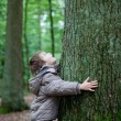 Little boy embracing big tree in the forest — Stock Photo #26161125