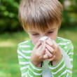 Little boy blowing his nose in the garden — Stock Photo #26161139