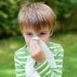 Boy with allergy covering his nose — Stock Photo #26161245