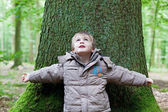 Little boy leaning on big tree — Stock Photo