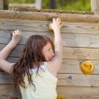Young Girl Climbing Wall At Playground — Stock Photo #26217655