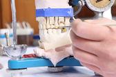 Dentist molding prosthetic teeth — Stock Photo