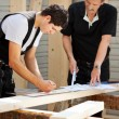 Stock Photo: Two carpenters at work