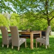 Dining Table And Chairs In Green Lawn — Stock Photo