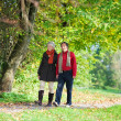 Stock Photo: Walking senior couple