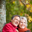 Happy old couple — Stock Photo #26289631