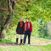 Walking senior couple — Stock Photo