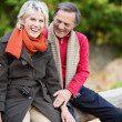 Sweet senior couple — Stock Photo #26290793