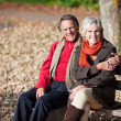 Lovely senior couple — Stock Photo #26290947