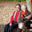 Stock Photo: Lovely senior couple