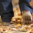 A man strolling through the forest in Autumn — Stock Photo #26291011