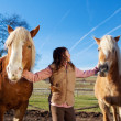 Pretty young girl with horses — Stock Photo