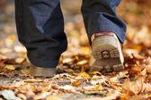 Un homme se promenant à travers la forêt en automne — Photo
