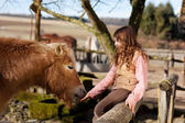 Happy young girl petting her horse — Stock Photo