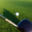 Golf Club And Ball — Foto Stock