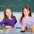 Young students — Stock Photo #26589241