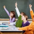 Stock Photo: Clever young students in class