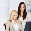 Businesswomen Using Computer Together In Office — Stock Photo #26605881