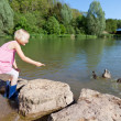 Little girl feeding the ducks — Stock Photo #26614431