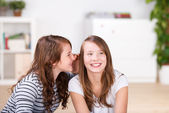 Young girl whispering secrets to her best friend — Stock Photo