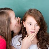 Gossiping girls — Stock Photo