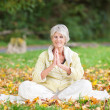 Stock Photo: Senior WomWith Hands Clasped Meditating In Park